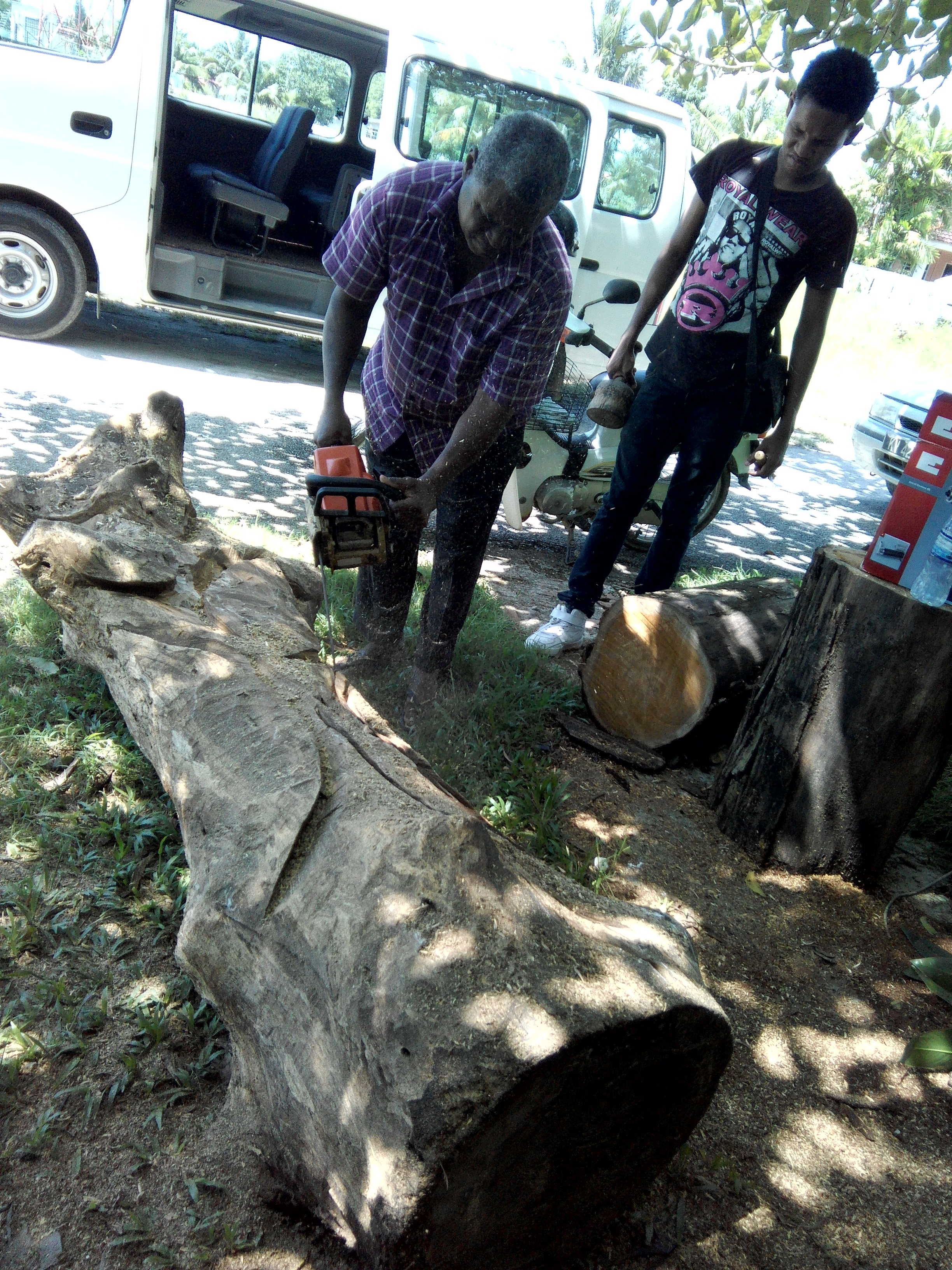 Jean Lewis Dick and his group from Mauritius continue their work on this log.
